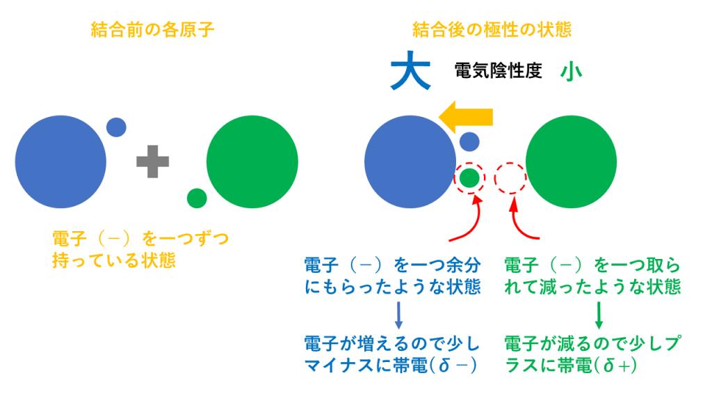電気陰性度と結合の極性